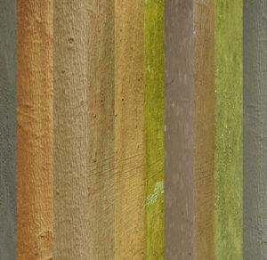 Rinde Baum Land Art Flüchtig